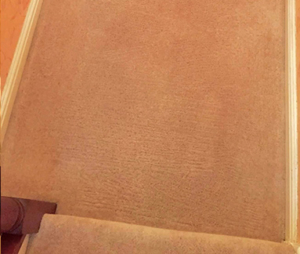 red wine carpet stain after cleaning