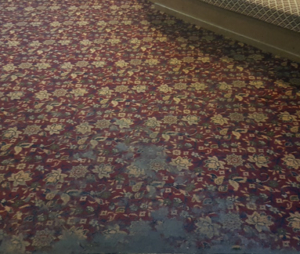 stained carpet before cleaning