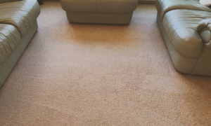 red wine stain after dry carpet cleaning
