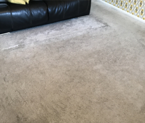marked carpet before cleaning